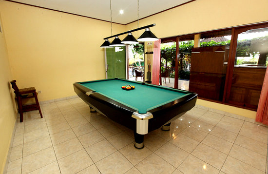 Bona Village Inn: Billiard