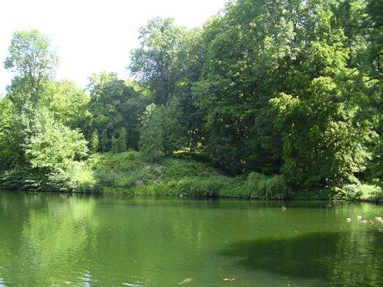 Alexandria Dendrological Park: Один из прудов парка