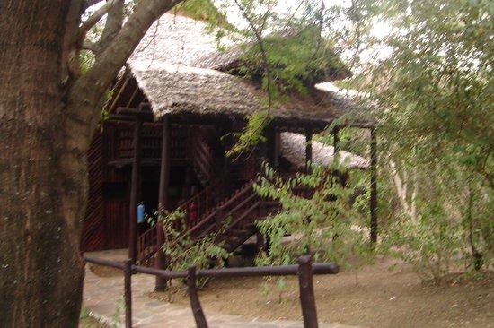 Mara Simba Lodge: our room
