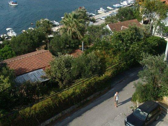 Villa Teresa: widok