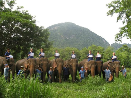 Mahout Lodge: Mahout Certificate