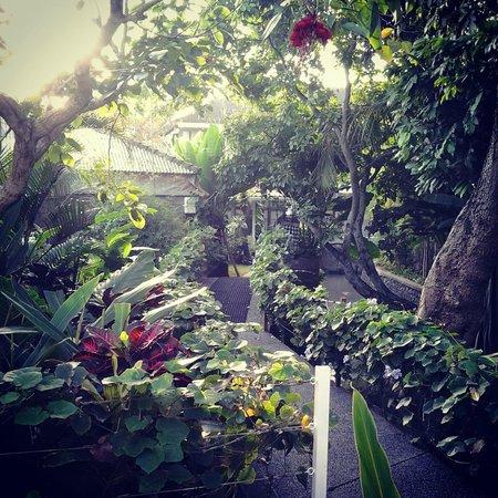 The Studio Bali: the garden