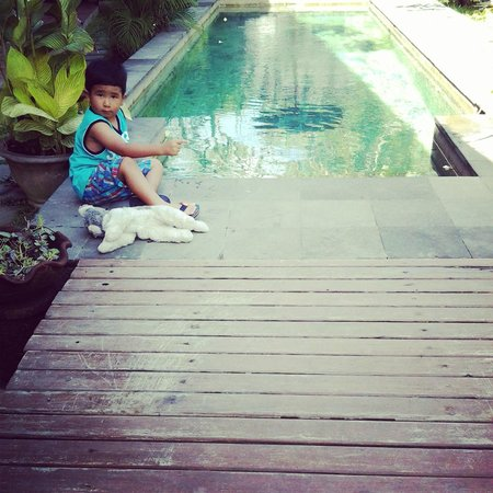 The Studio Bali: pool