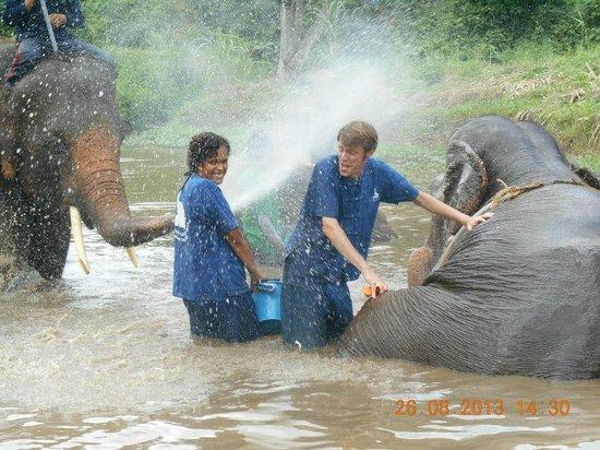 Magical Elephant Training: Taking a bath...