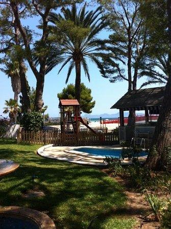 Aparthotel Orquidea Playa: udsigten til stranden, fra pool området
