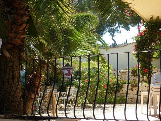 Las Palmeras: Garden views