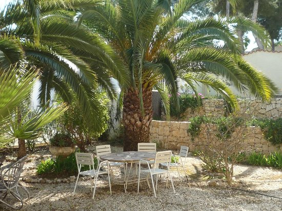 Las Palmeras: The Spanish Garden