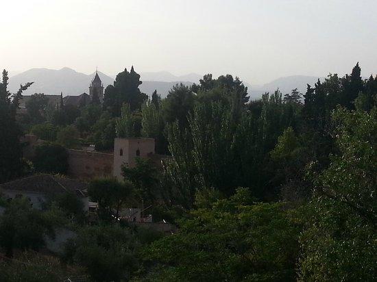 Guadalupe Hotel: Alhambra vistas