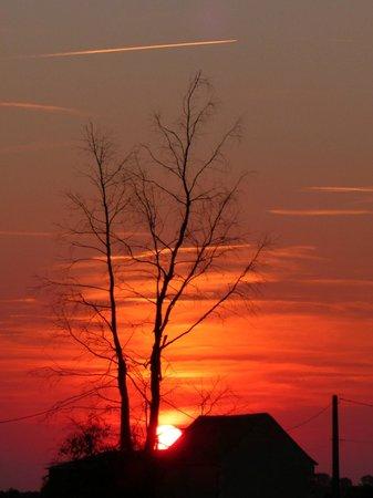 Les Petites Cigognes: sunset