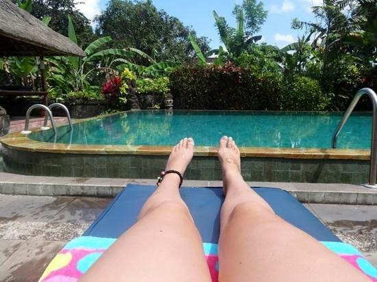 Gayatri Bungalows: the pool