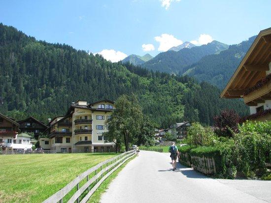 Landhaus Roscher: The hotel environs