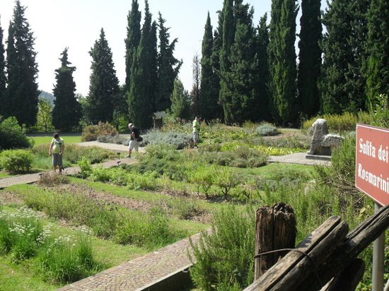 Parco Giardino Sigurta: piante officinali