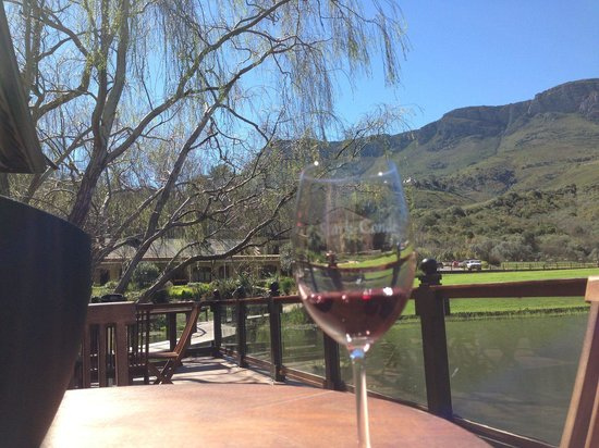 Stark-Condé Wines : View from the tasting room