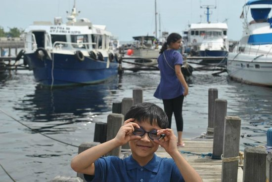 Pulau Bidadari Resort: jetty to hire speed boats