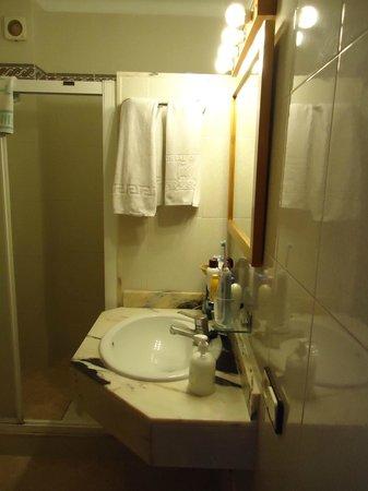 Hostal de la Caravel-la: Wasbak met toilet en douche