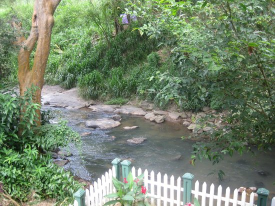 Kandy Guest House : Balcony view