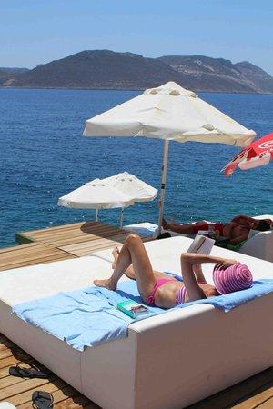 Villa Hotel Tamara: terrasse
