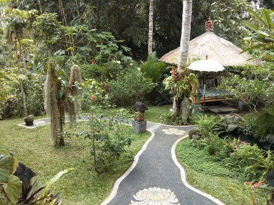 White Lotus Yoga & Meditation Centre: The garden