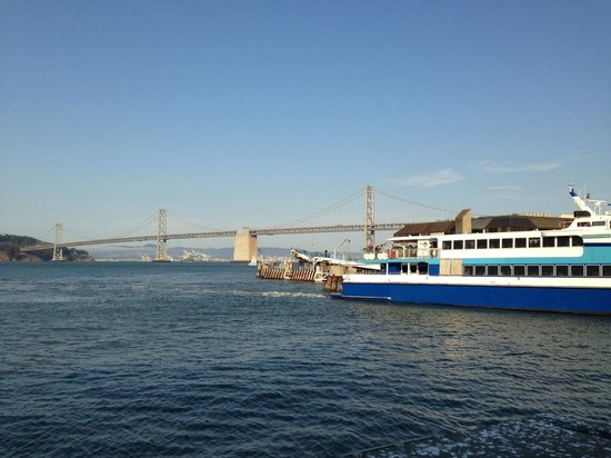 Hog Island Oyster Company: The happy hour view