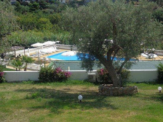 Diamond Residence: Vista sulla piscina