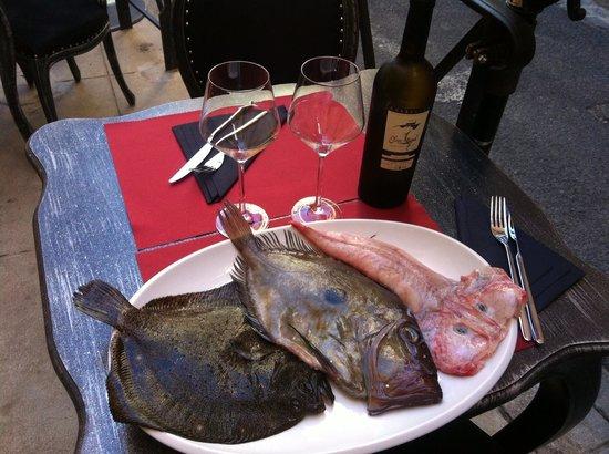 Le Boudoir : Un choix de poisson frais que du bonheur