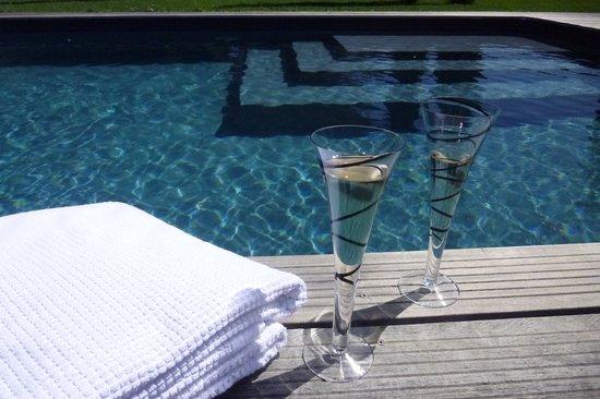 Le Mas de Bassette Maison d'hotes: la piscine