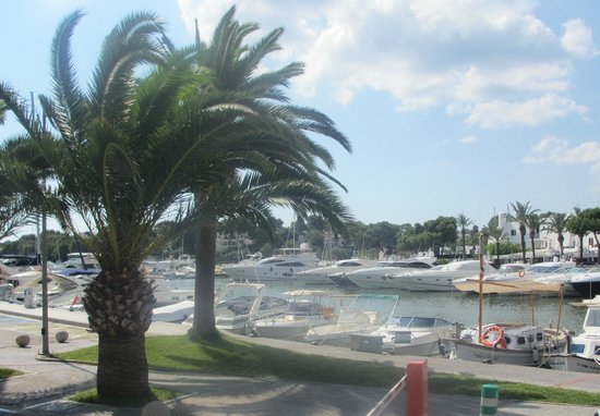 Restaurante Zocalo: Harbour view from the restaurant
