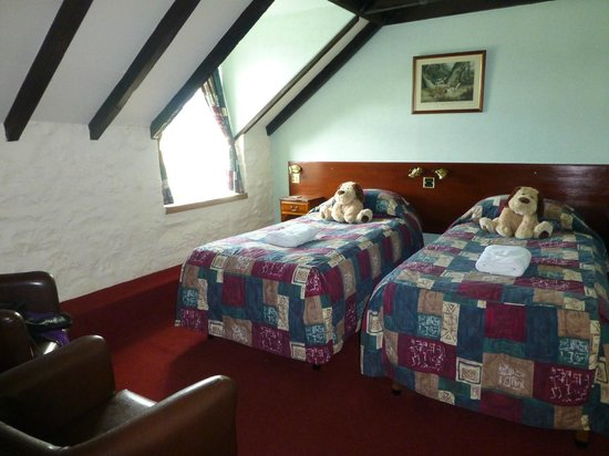 Steadings at the Grouse & Trout: Single beds??