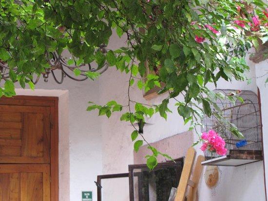Hotel Villa del Villar: Tiny visitor