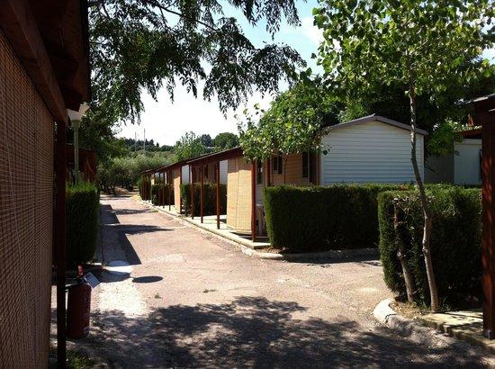 Petacciato, Italien: Case mobili