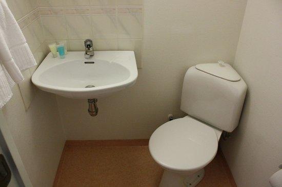 Hotel Aldoria: il bagno, con solo i sanitari