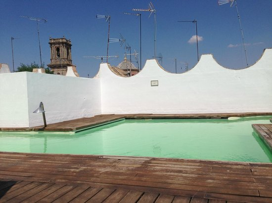 Las Casas de la Juderia : Rooftop swimming pool