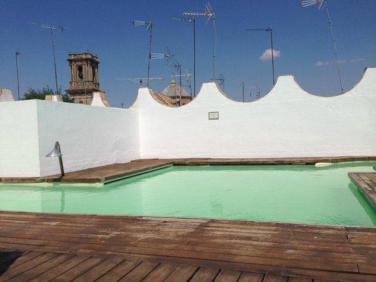 Las Casas de la Juderia : Rooftop swimming pool
