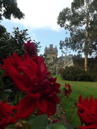 Castle Kennedy Gardens: beautiful