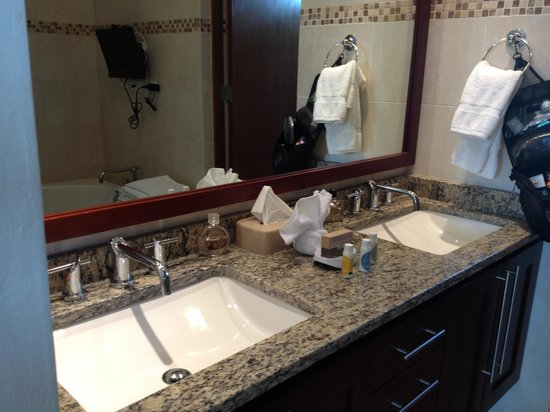 Ciqala Luxury Suites: Masterbath sink area