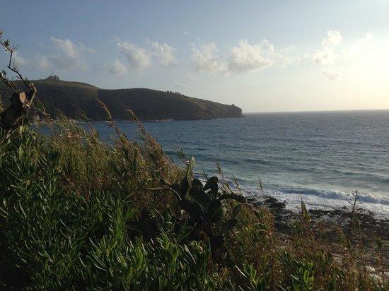 Villaggio degli Olivi: Vento di mare