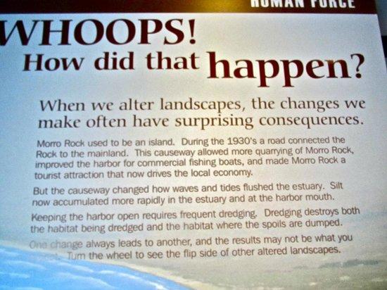 Museum of Natural History: Display Environmental Changes-Natural History-Morro Bay