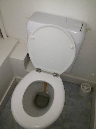 Hotel la Roseraie: Family room toilet complete with disgusting stain