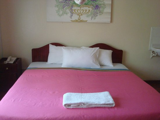 Hibiscus Guest House: My beautiful king-sized bed.