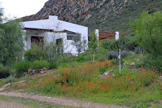 Kogman & Keisie Guest Farm : Our charming cottage