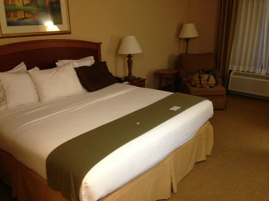Holiday Inn Express & Suites Florence I-95 & I-20 Civic Ctr: king room