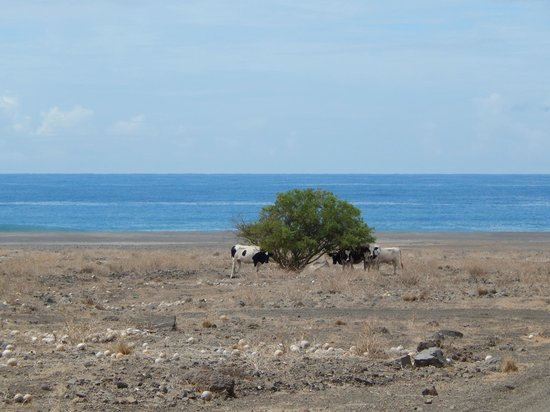 Sao Vicente, Cabo Verde: 3