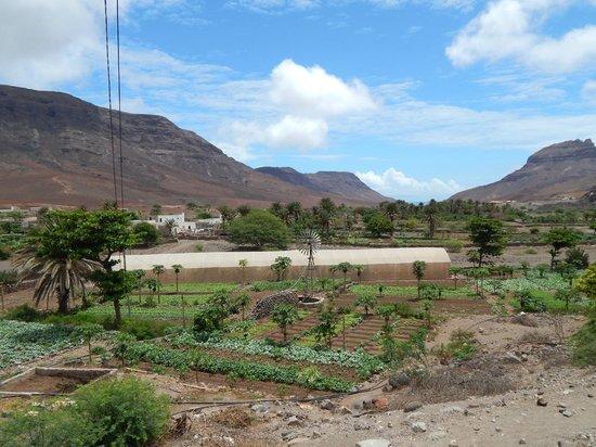 Sao Vicente, Cabo Verde: 4