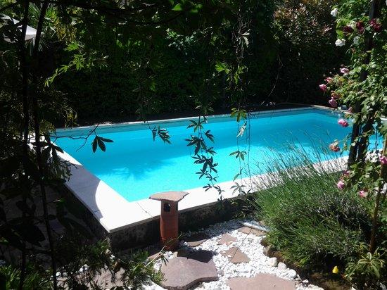 La Piscina: piscina/giardino
