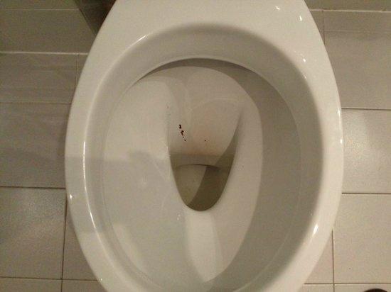Best Western Globus Hotel: Foto di come abbiamo trovato il wc