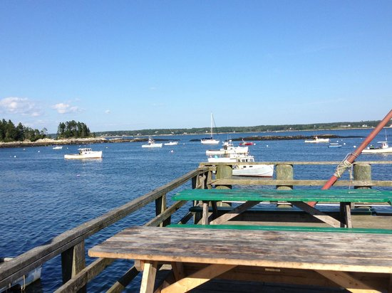 Five Islands Lobster Co: View from our picnic table!