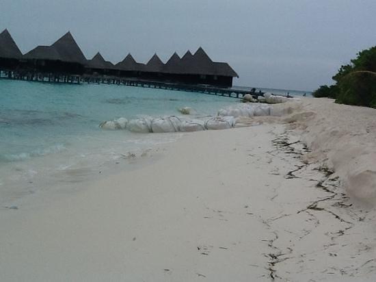 Coco Palm Dhuni Kolhu : villas sur pilotis