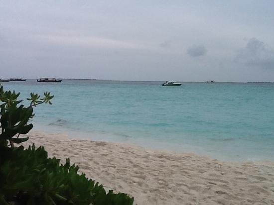 Coco Palm Dhuni Kolhu : vue du transat