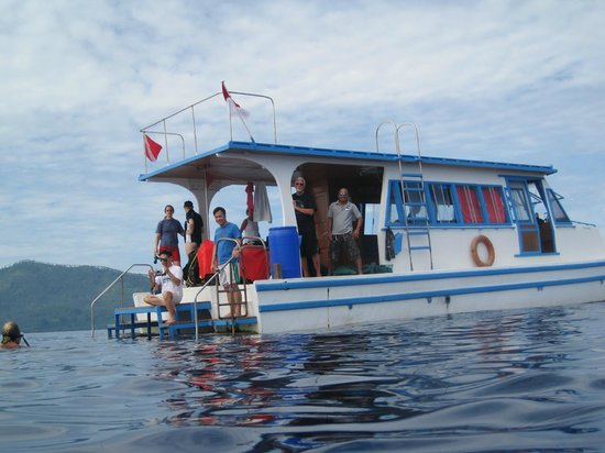 Lumbalumba Diving: Diveboat while swimming with pilot whales