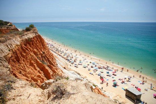 Spiaggia (75272496)